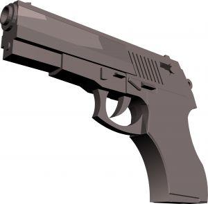 1189093_firearm_1.jpg