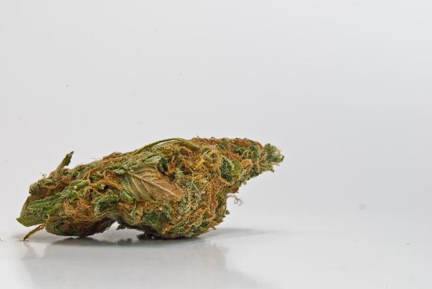 marijuana.bmp