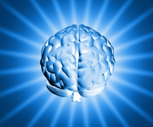 shiny-brain-1254880-m.jpg