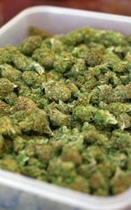 marijuanatray